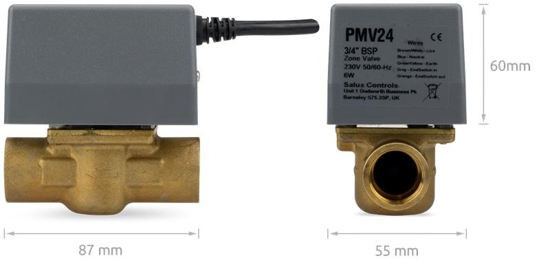 PMV21